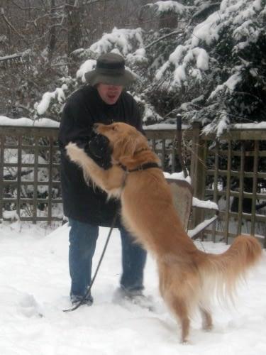 Hond springt tegen mensen op