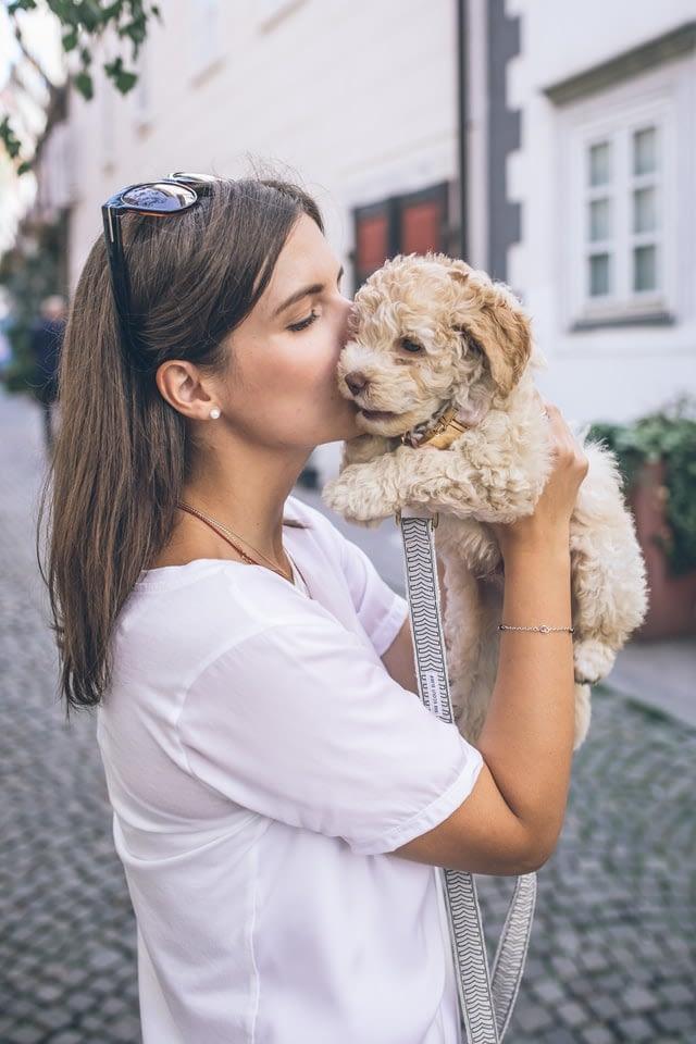 echte hondenliefhebber